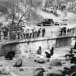 Then & Now: Oregon Zoo